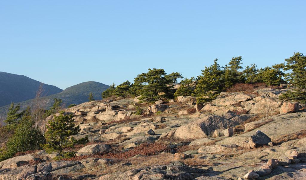 Gorham Mountain in Acadia National Park.