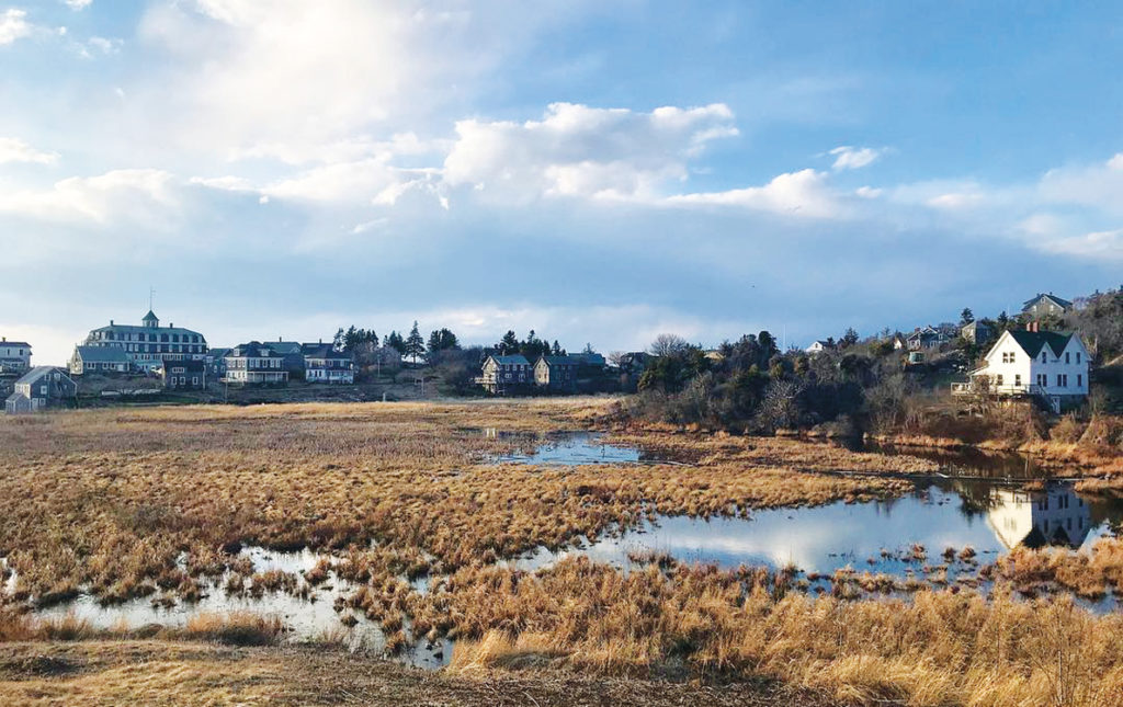 Monhegan Island's marshy freshwater meadow is part of the aquifer.