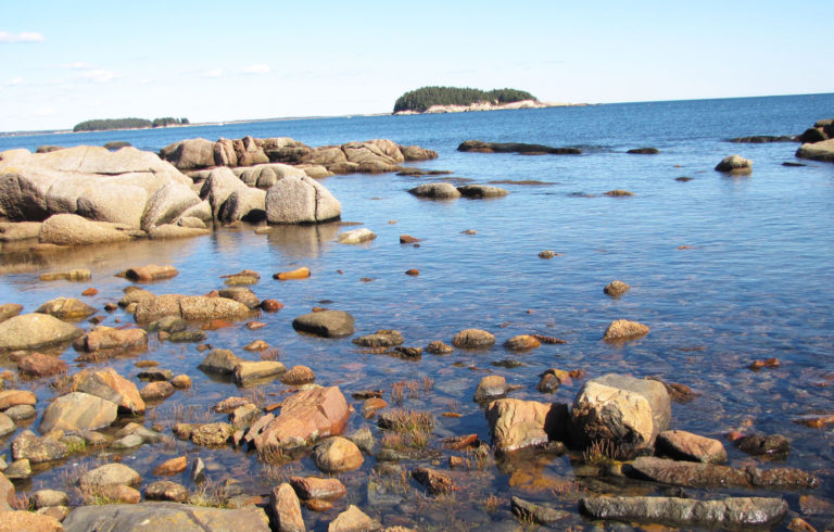 A view of the shore near Schoodic Point.