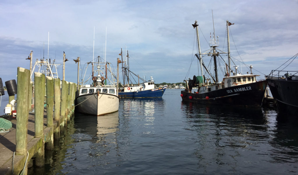 The Port of Galilee in Rhode Island is home to a thriving squid fishery