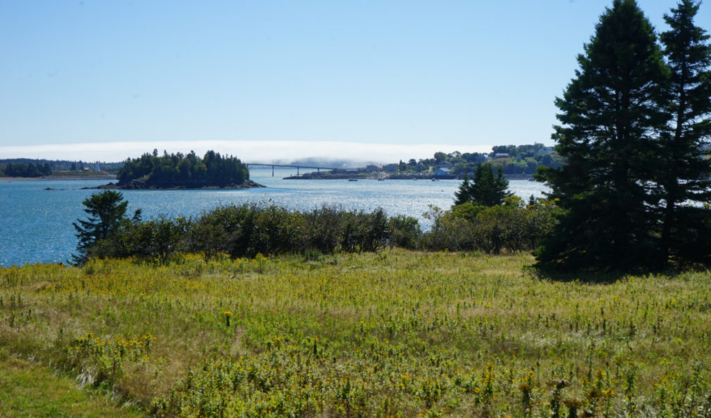 The view from Treat Island in Passamaquoddy Bay
