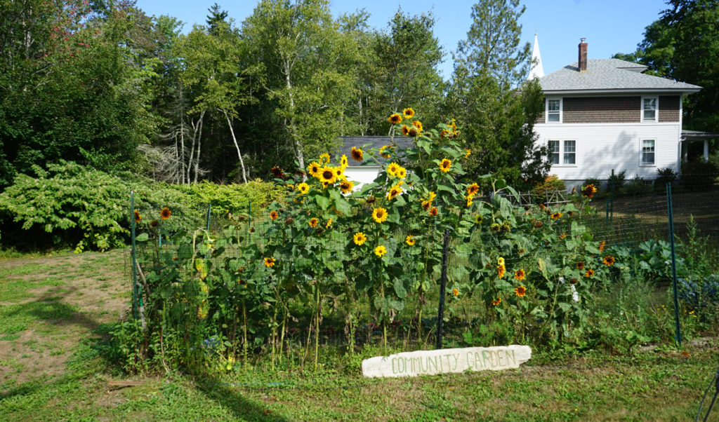 Islesboro community garden.