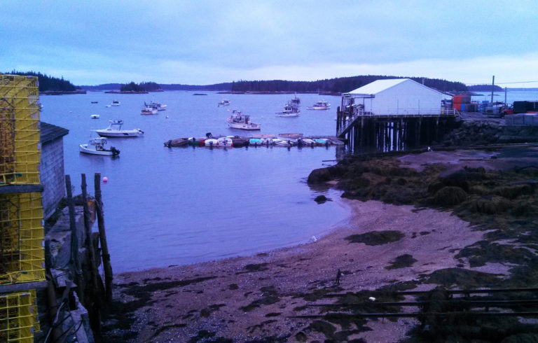 The November light at dusk brings out unusual colors on this Stonington shore.