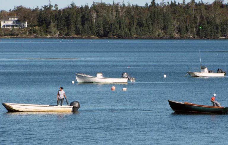 One fishermen uses a skiff to tow a skiff with another fisherman in the Fox Islands Thorofare.
