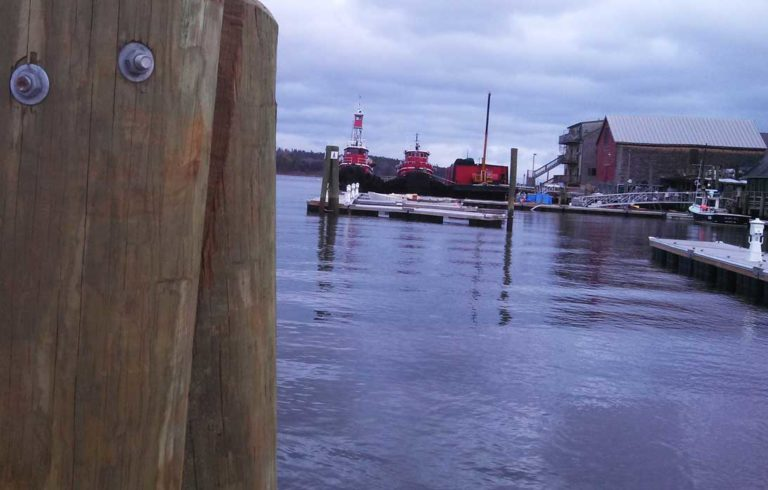 A view of Belfast's tug boats from the harbor walkway.