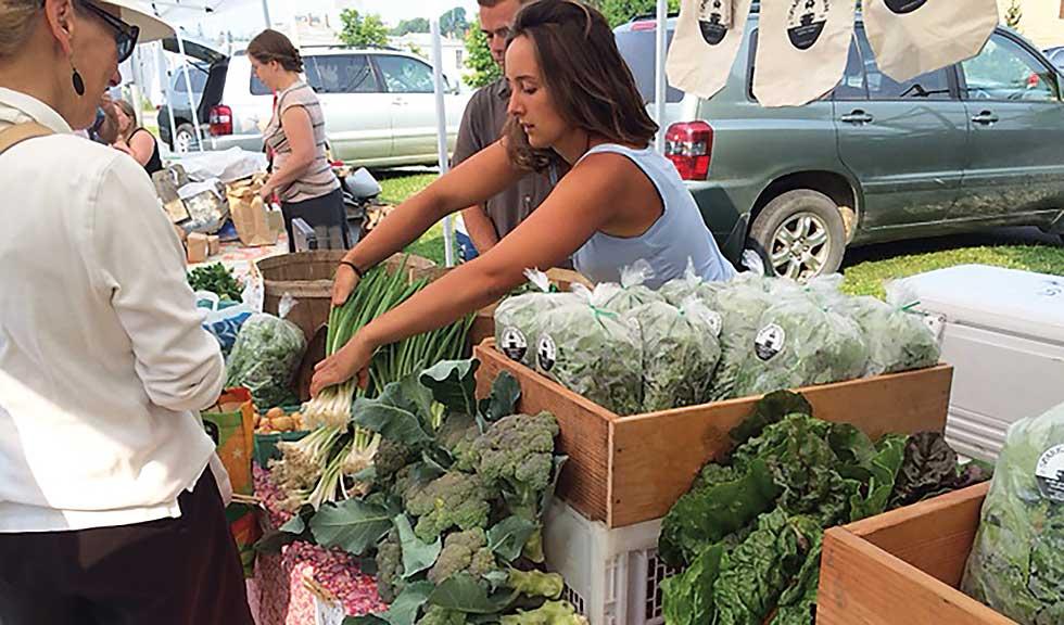 Artisan vegetables: Sparkplug Farm at the Vinalhaven Farmers Market.