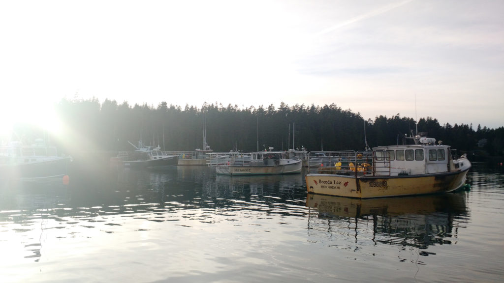 Boats at the Winter Harbor Lobster Coop
