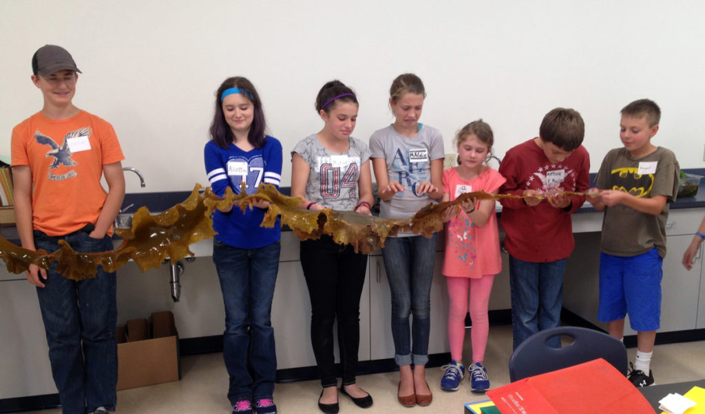 """Students hold a """"blade"""" of kelp they've grown."""