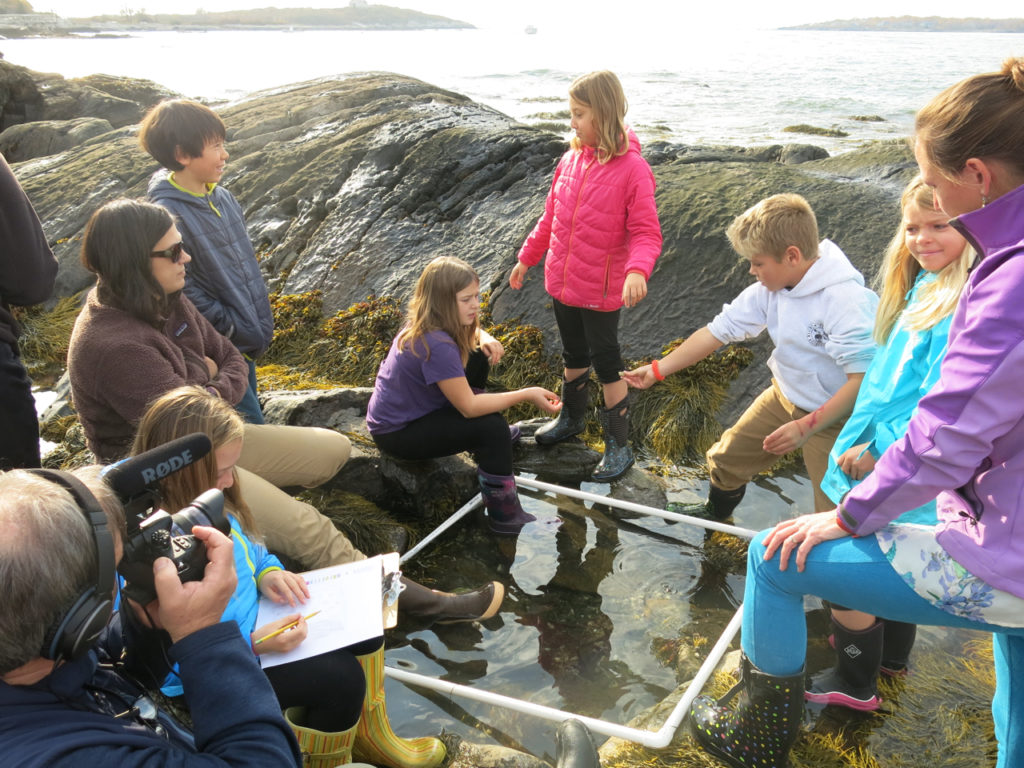 Long Island students studying biodiversity in a tide pool