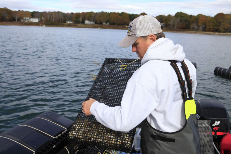 Chebeague fisherman and former ABD participant Jeff Putnam works on oyster cages. After going through the program in 2016