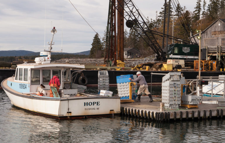 Fishermen work on the waterfront on Islesford as November settles in.