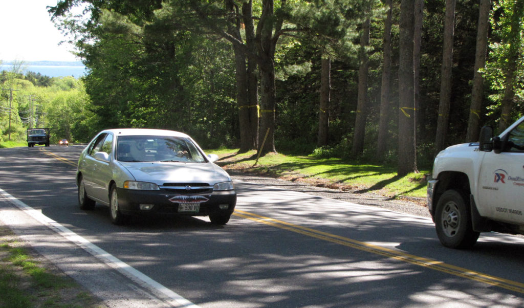 Yellow ribbons mark trees that would be removed from a stretch of U.S. Route 1 north of Camden village slated for work by the Department of Transportation