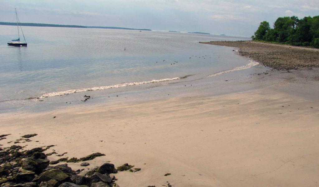A beach in the Midcoast.