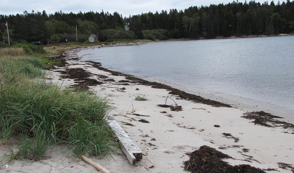 Carrying Place beach on Swan's Island.
