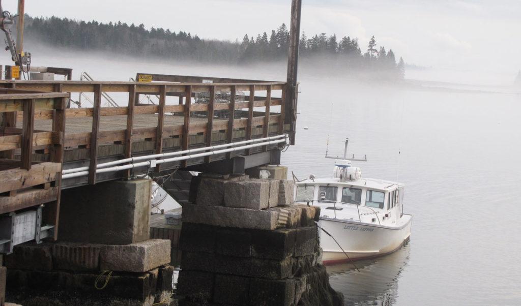 Foggy day on Islesboro