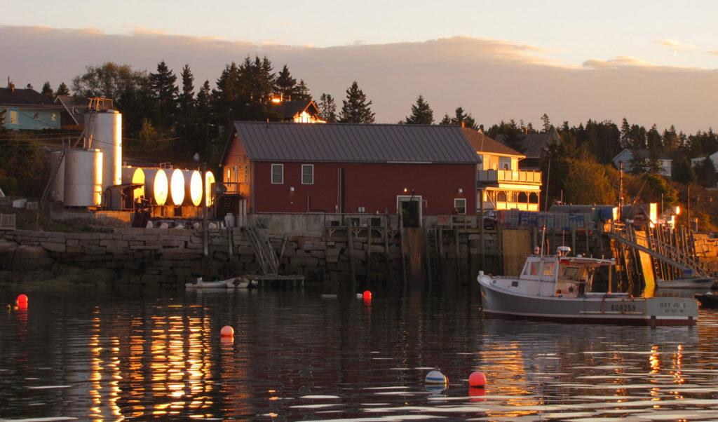 Stonington's harbor at dawn.
