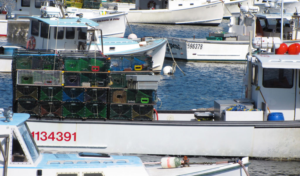 Lobster boats in Vinalhaven's Carver's Harbor.