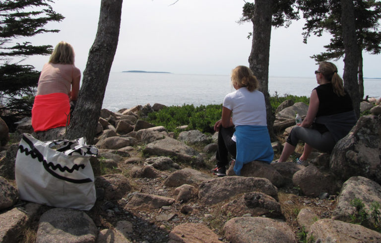 Sitting on Great Cranberry Island's back shore