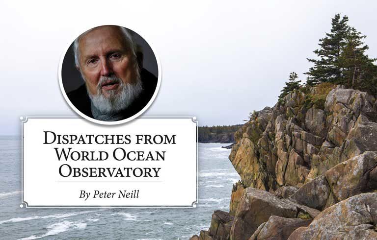Word Ocean Observatory