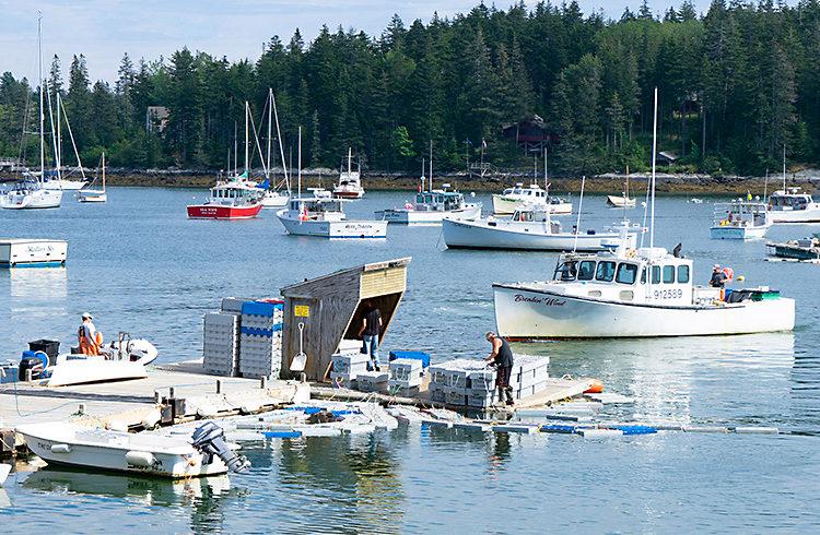 Tentants Harbor