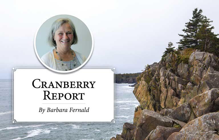 Cranberry Report