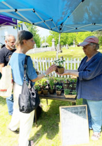 Sandy Oliver, right, at the farmers market.